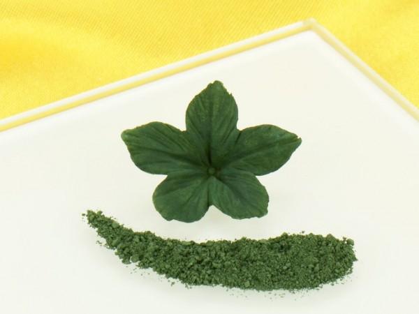 RD Puderfarbe Olive Green 2,5g