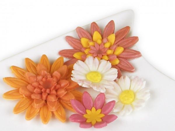 Weiße Blütenpaste 1kg